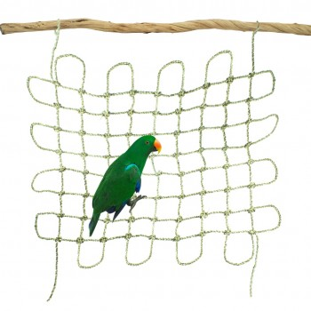 Parrot Seagrass Net 60x60