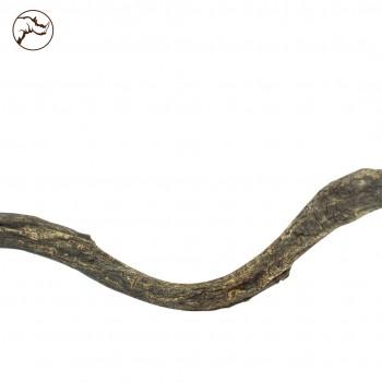 Curly Vine 60 cm