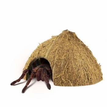Coco Hiding Cave