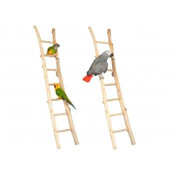 Ladder Teakhout 100 cm